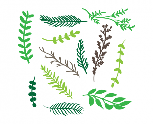 Free SVG cut file - 2001 - Hand Drawn Branches