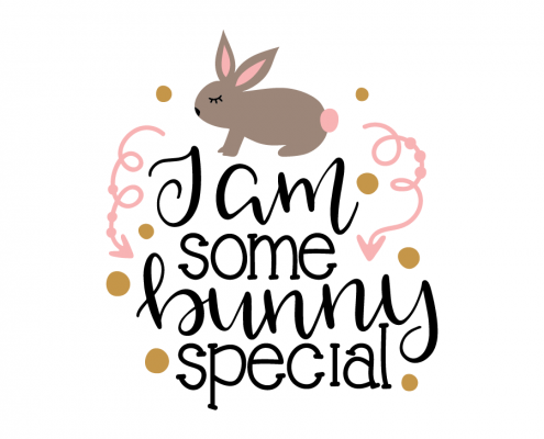 Free SVG cut file - I am some bunny special