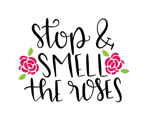 Free SVG cut files - Stop & smell the roses