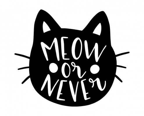 Free SVG cut file - Meow or never