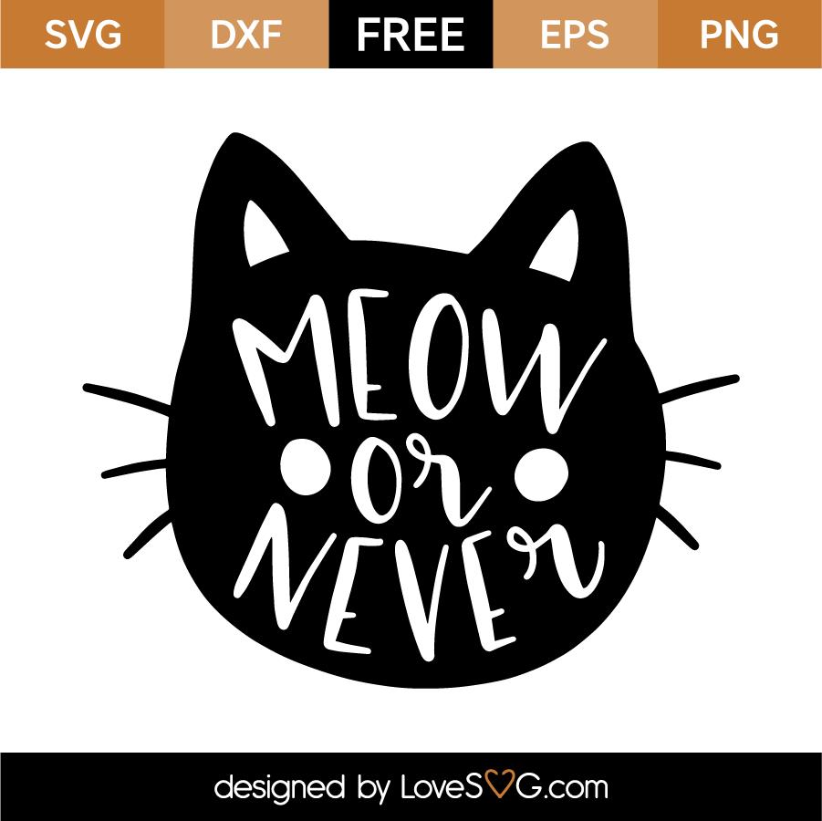 Meow or Never | Lovesvg.com