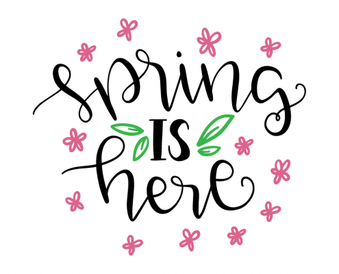 Free SVG cut files - Spring is here