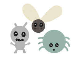 Cute little bugs