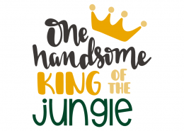 One handsome king of the jungle