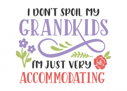 I don't spoil my grandkids, I'm just very accommodating