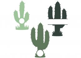Cactus monogram and split frames