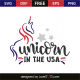Unicorn in the USA