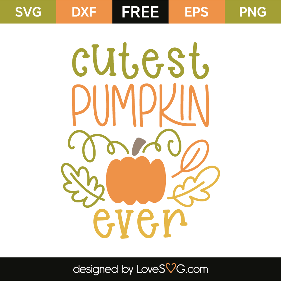 Cutest pumpkin ever