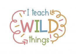I teach wild things
