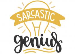 Sarcastic genious