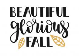 Beautiful glorious fall