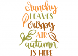 Crunchy leaves crispy air autumn is here