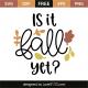 Is it fall yet?