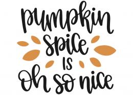 Pumpkin spice is oh so nice