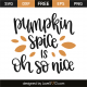 Pumpkin spice is oh so nice