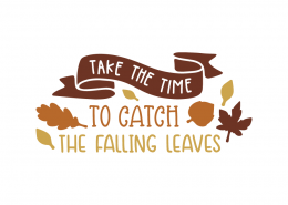 Take the time to catch the falling leaves