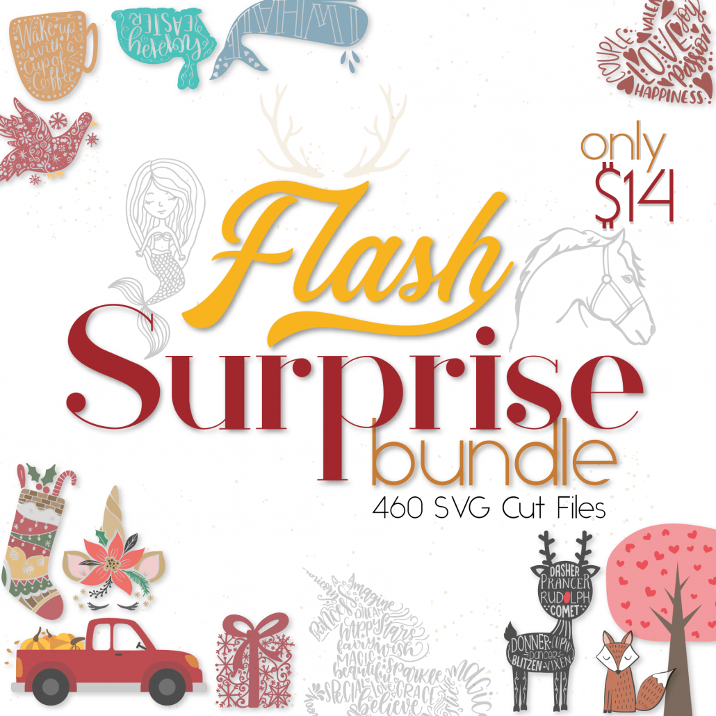 The Flash Surprise Bundle $14