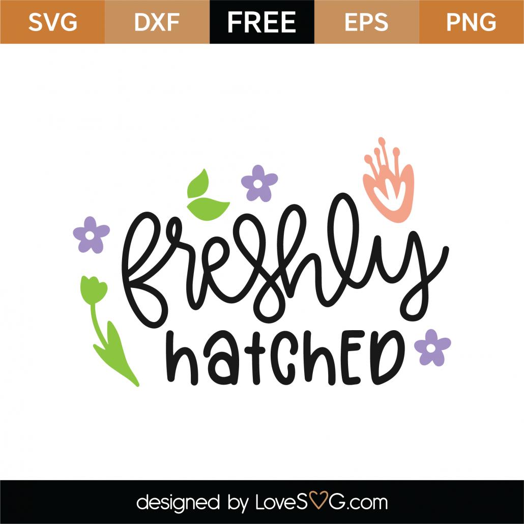 Freshly Hatched SVG Cut File