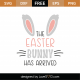 The Easter Bunny Has Arrived SVG Cut File 8780