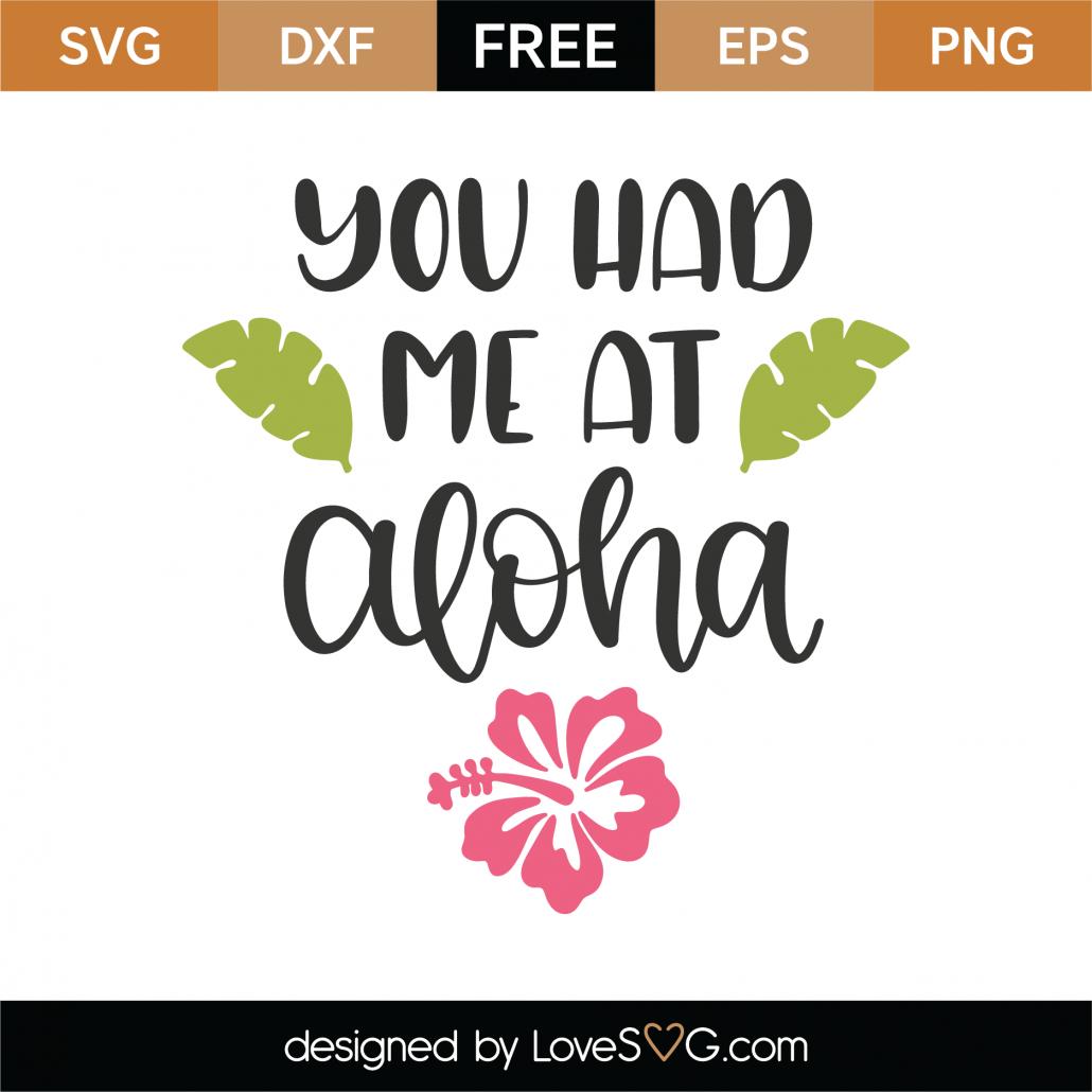 You Had Me At Aloha SVG Cut File 8797