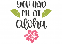 You Had Me At Aloha SVG Cut File 8797