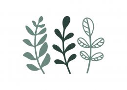 Leaves SVG Cut File 9104