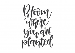 Bloom Where You Are Planted SVG Cut File 9327