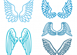 Wings SVG Cut Files 9311