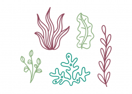 Under The Sea Plants SVG Cut File 9500