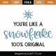 You're Like A Snowflake SVG Cut File 10010