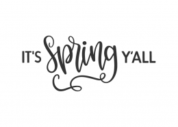 It's Spring Y'all SVG Cut File 10633